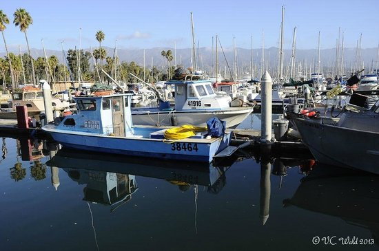 The Eagle Inn: Santa Barbara Harbor a short walk from the Inn