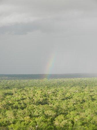 El Mirador: Miles and miles of jungle