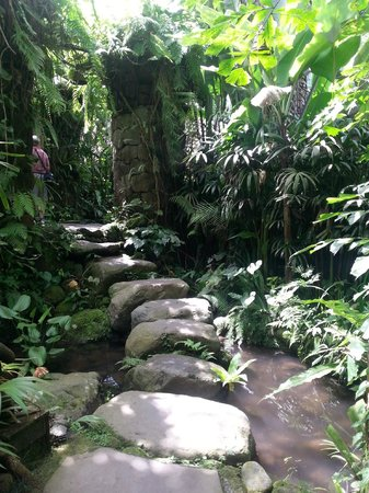 Villa Orchid Bali: Grounds - path