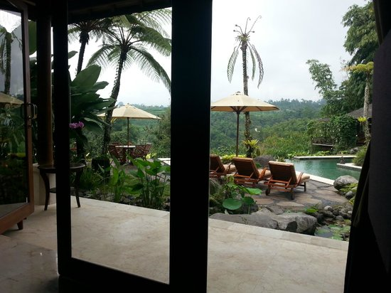 Villa Orchid Bali: View from the room overlooking pool