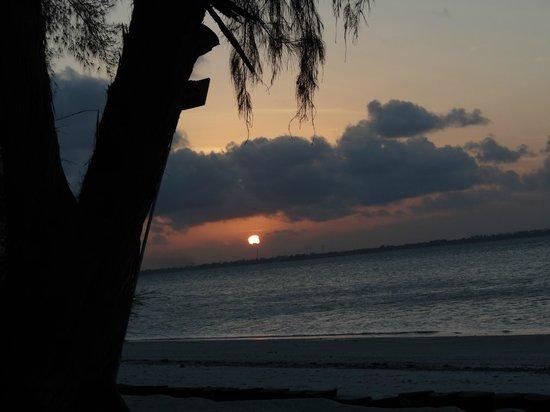 Michamvi Sunset Bay Resort: Sunset