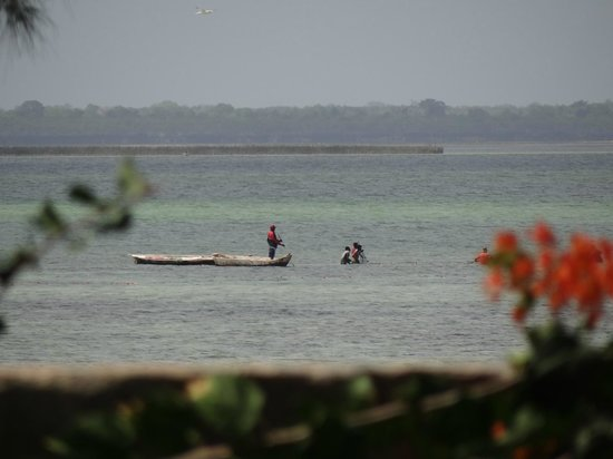 Michamvi Sunset Bay Resort: Ocean View