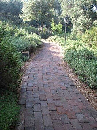 Rancho La Puerta Spa : typical landscaped walkway