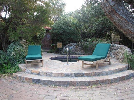 Rancho La Puerta Spa : jacuzzi neary room