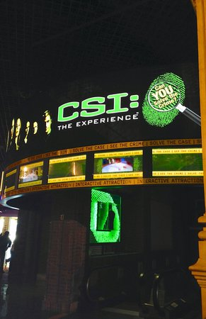 CSI: The Experience : The entrance