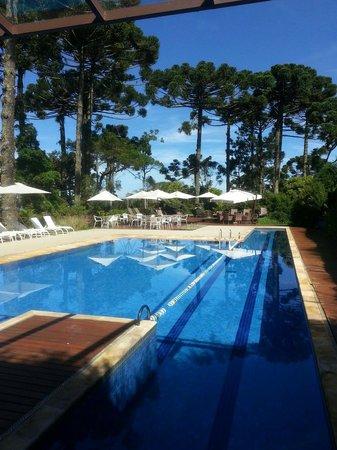 Hotel Toriba : 또리바 수영장.