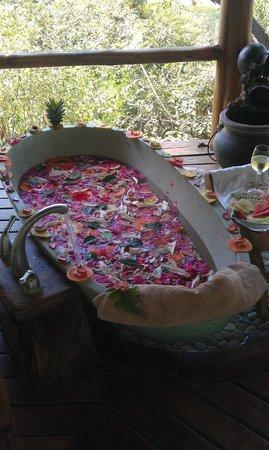 Los Altos de Eros: Indonesian fruit soaking tub...incredible!