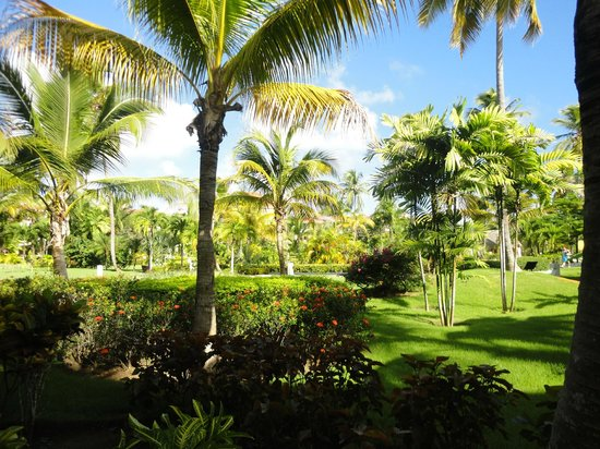 Paradisus Palma Real Golf & Spa Resort: Vista desde el balcón de mi habitación