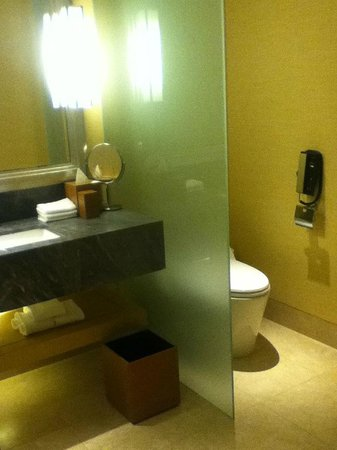 Marina Bay Sands: Clean BathRoom