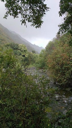 Iao Valley State Monument - TEMPORARILY CLOSED : Creek