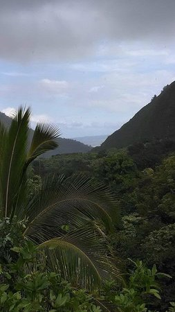 Iao Valley State Monument: Looking back towards town
