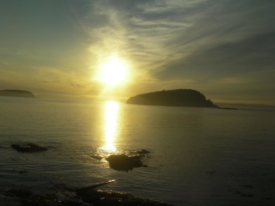 Shore Path: Sun rise in Bar Harbor