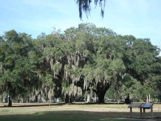 Fort Frederica National Monument: Scenery