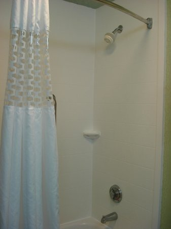 Hampton Inn St. Simons Island: Great shower