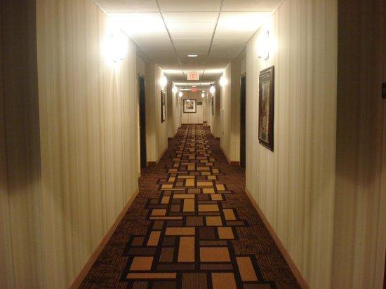 BEST WESTERN PLUS First Coast Inn & Suites: Hallway