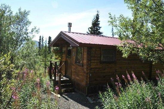 Tundra Rose Guest Cottages : cabine avec vue sur le glacier