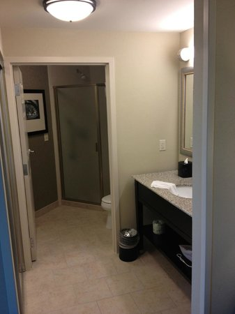 Hampton Inn & Suites Baton Rouge Downtown : Bathroom