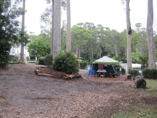Durras Lake North Holiday Park : Camping bliss