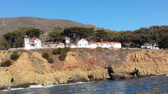 Seaweed Express: Point San Luis Light