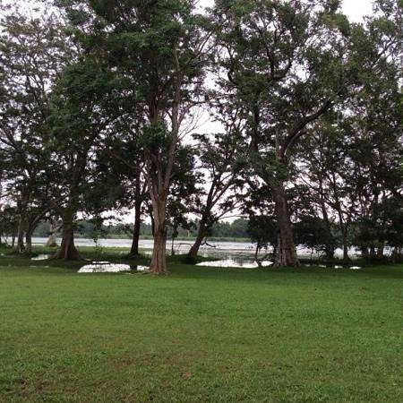 Habarana Village by Cinnamon: lake and gardens surrounding the hotel