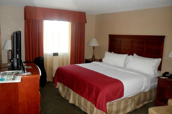 Holiday Inn Dallas Market Center: The room