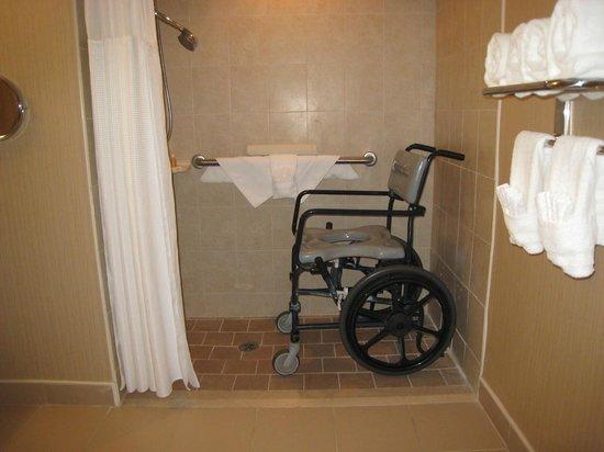 Flagship Resort: roll in shower