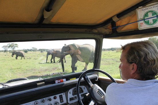 Ol Pejeta Bush Camp, Asilia Africa: View from the vehicle.