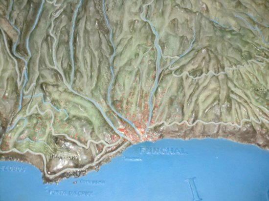Museum of Natural History (Municipal Museum of Funchal) : funchal