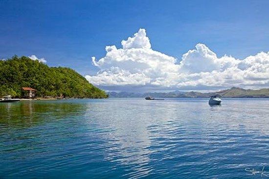 El Rio y Mar Resort: At the reef area