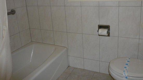 Park Vue Inn: バスルーム