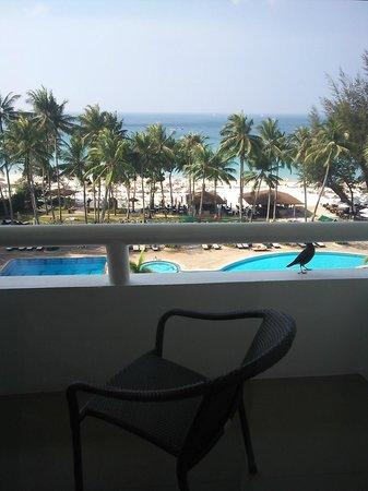 Le Meridien Phuket Beach Resort : バルコニーに鳥がきました。