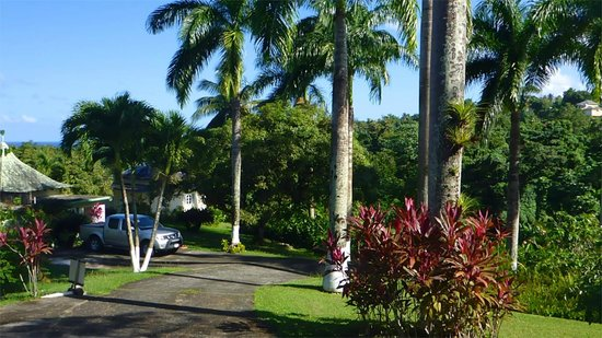 Well Maintained Grounds Picture Of Rio Vista Resort Port Antonio