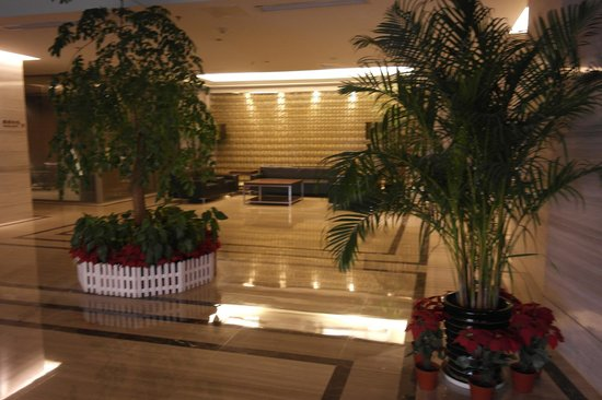 Nanjing New Town Hotel: Lobby Area