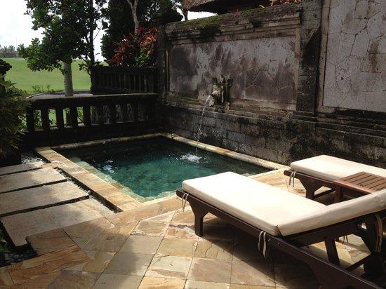 Pan Pacific Nirwana Bali Resort : Villa plunge pool