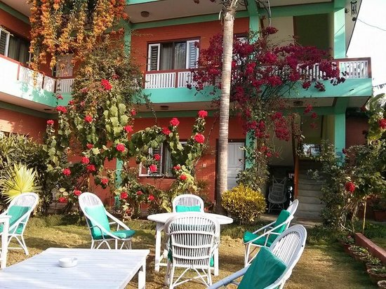 New Pokhara Lodge: The beautiful colour in the garden and this is during winter!