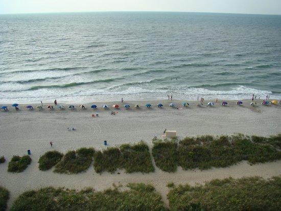 Sea Crest Oceanfront Resort: Morning