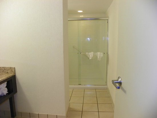Embassy Suites by Hilton Charlotte: Shower has mold around bottom frame
