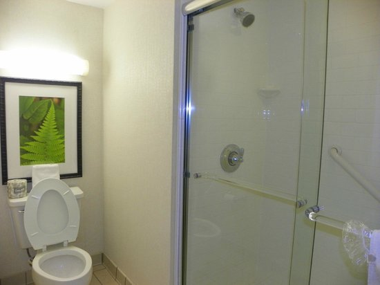 Embassy Suites by Hilton Charlotte: bathroom