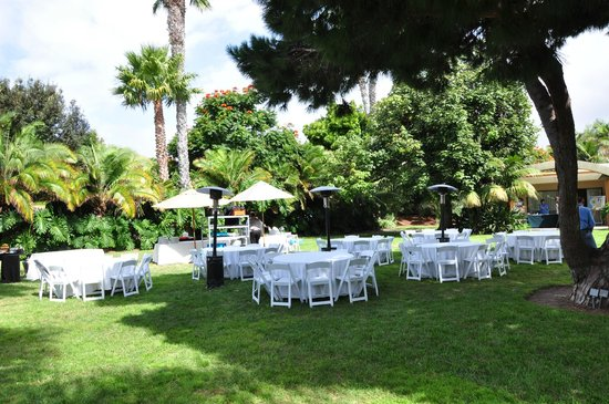 Paradise Point Resort & Spa: Zona Lunch Conferenza
