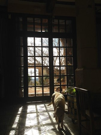 Hostal del Castell de Gimenelles : recepcion