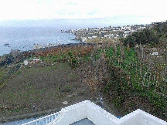 Paradise Beach Hostel: vista su Forio