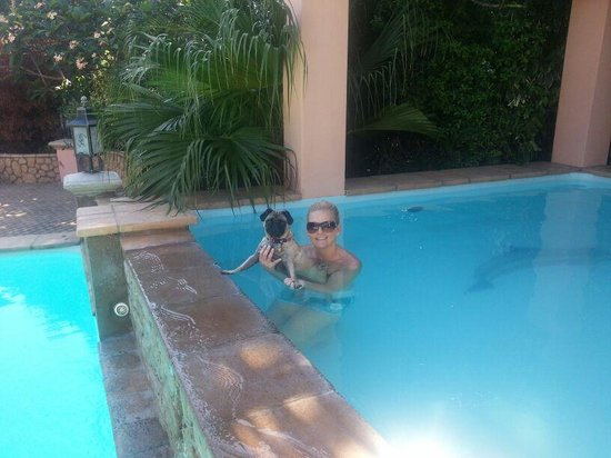 Stephans Guesthouse: Enjoying a swim