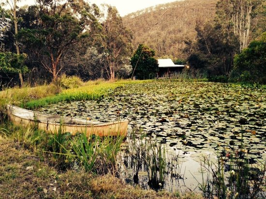 Barney Creek Cottages: Lake View