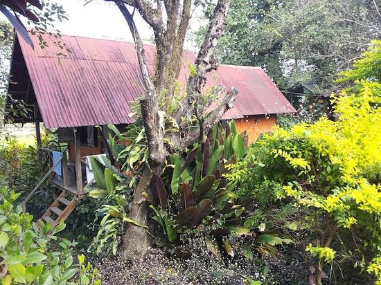 Maylyn Guest House: Bungalows