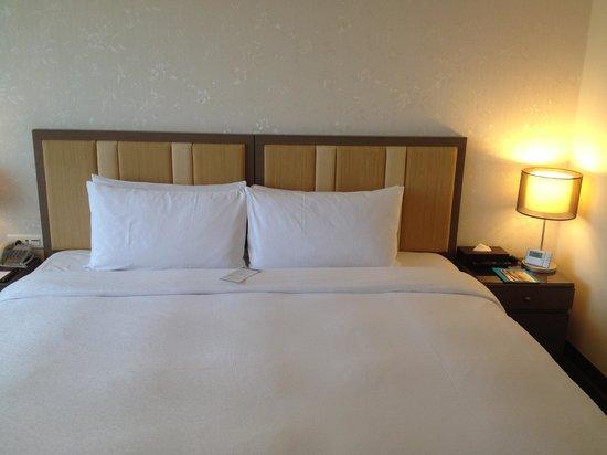 Taipei Garden Hotel: room2