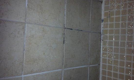 Comfort Inn & Suites Levittown: Mold in shower bath