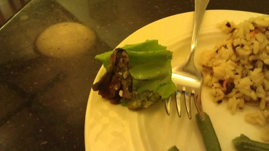Homewood Suites by Hilton Indianapolis-Downtown: Rotten lettuce from salad