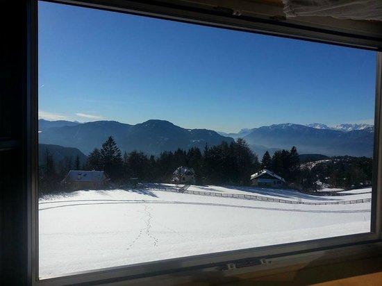 Hotel Naturidylle Geyrerhof: Vista dalla Camera