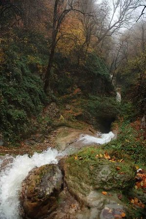 loveh-waterfall-gorgan