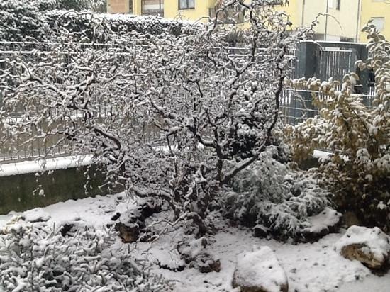 B&B Manu & Dige: 01 dicembre 2014... la prima neve!